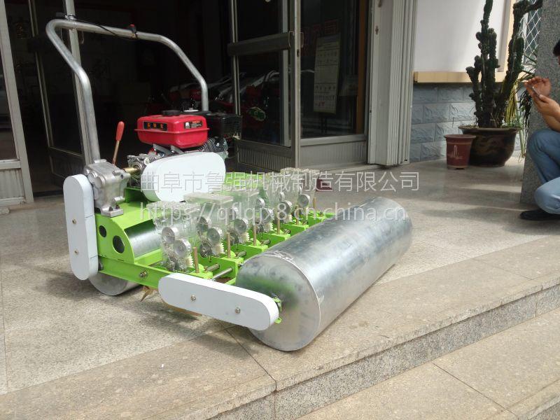 国内先进的蔬菜播种机 青菜播种机 手推式6行韭菜香菜播种机价格鲁强机械