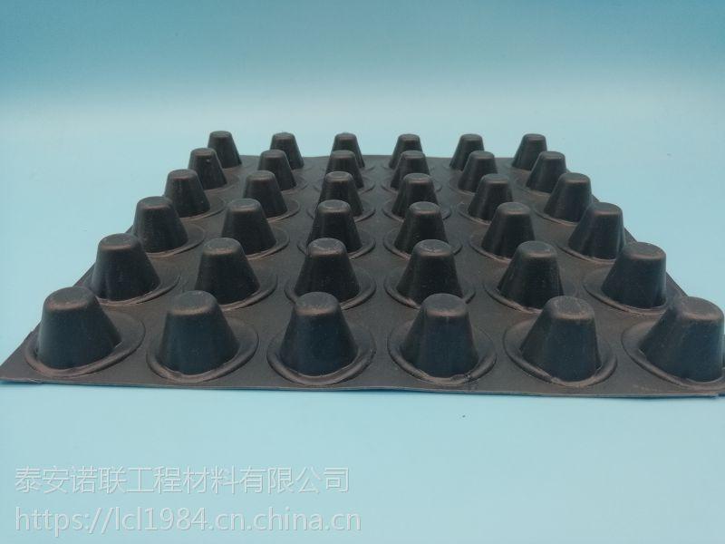 辽宁HDPE塑料排水板生产厂家供应鞍山6公分凹凸排水板