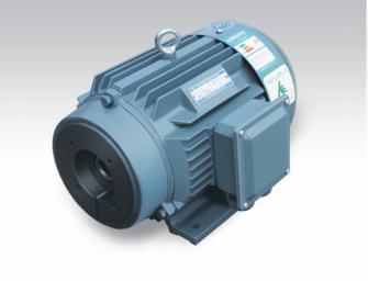 油泵专用电动机