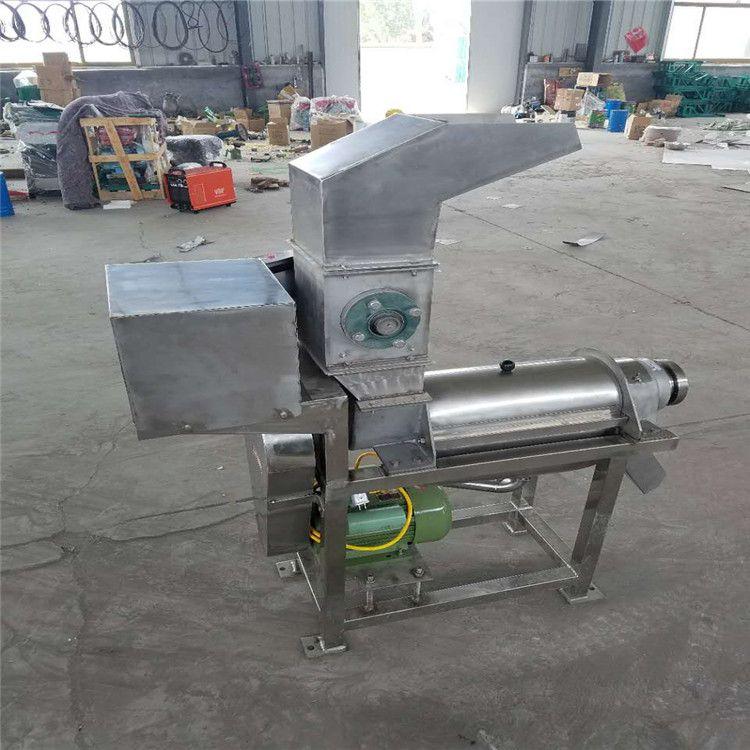 鲁强机械生产新型果蔬榨汁机 水果打浆机设备