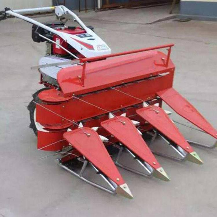 多行割晒机18375473032玉米辣椒收割机稻谷收割机