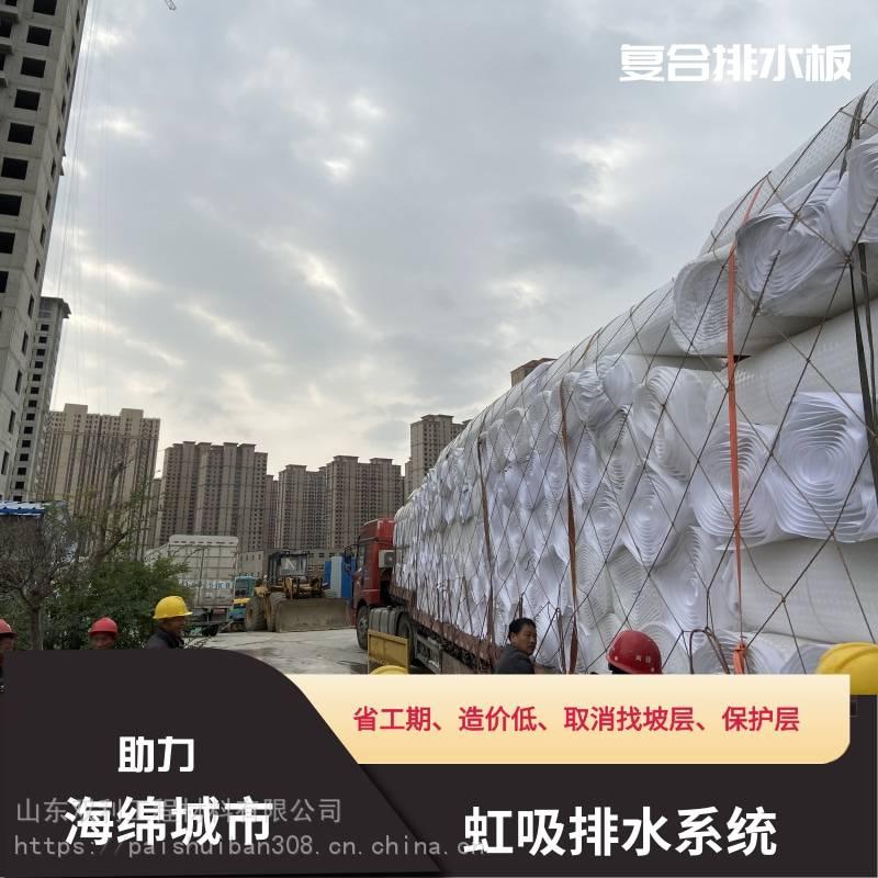 鹰潭市余江区-长效复合排水板-省工期-造价低