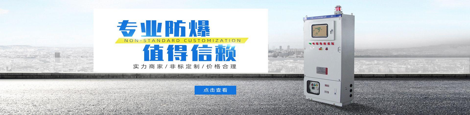浙江飞骏防爆电气有限公司