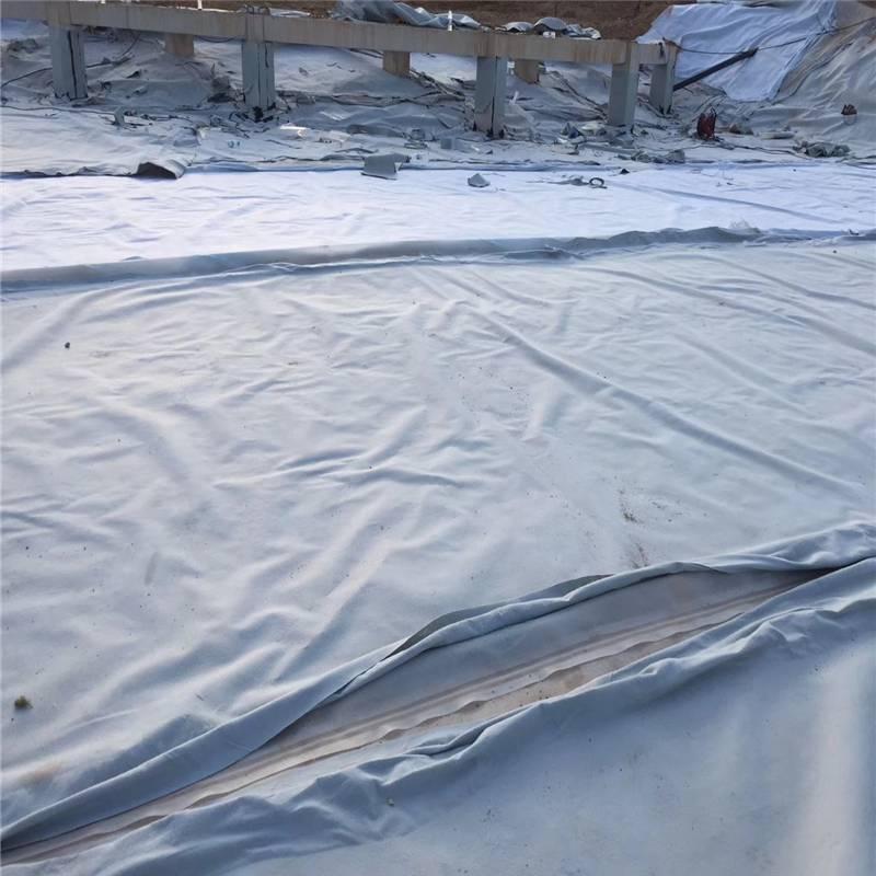 黑龍江魚塘複合土工膜