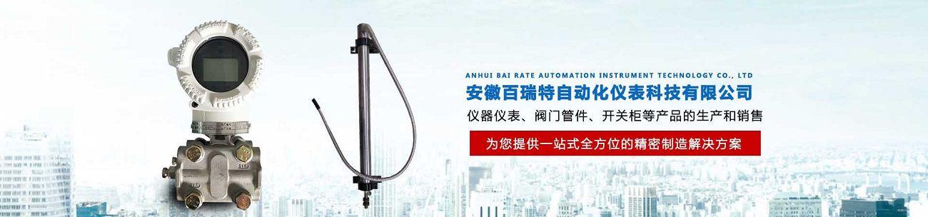 安徽百瑞特自动化仪表科技有限公司