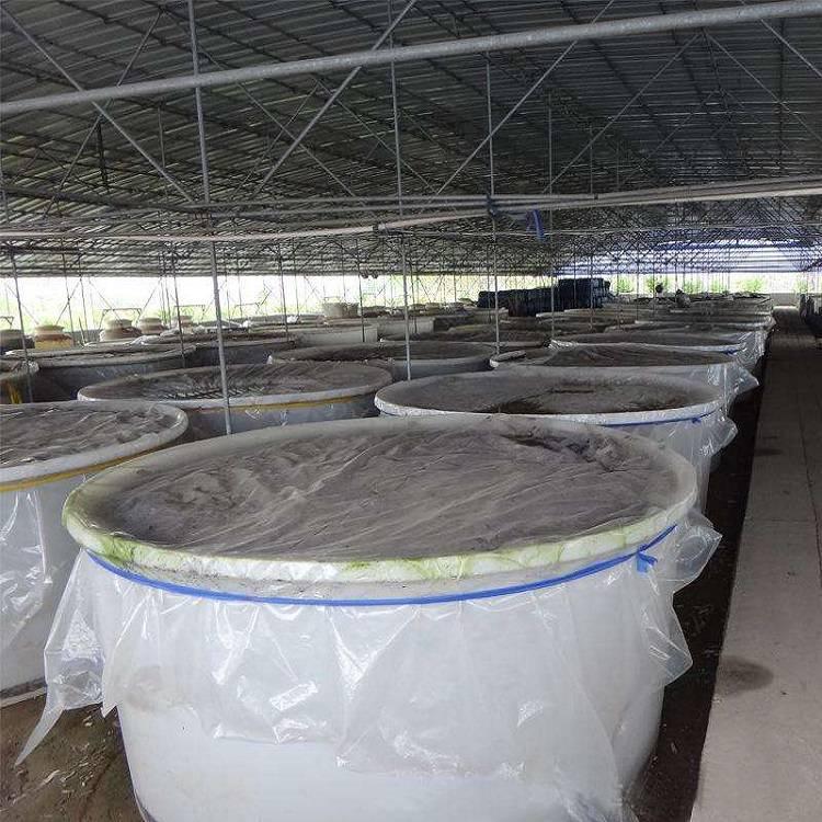 供应pe塑料大圆桶 酵素发酵桶食品级原材料环保卫生