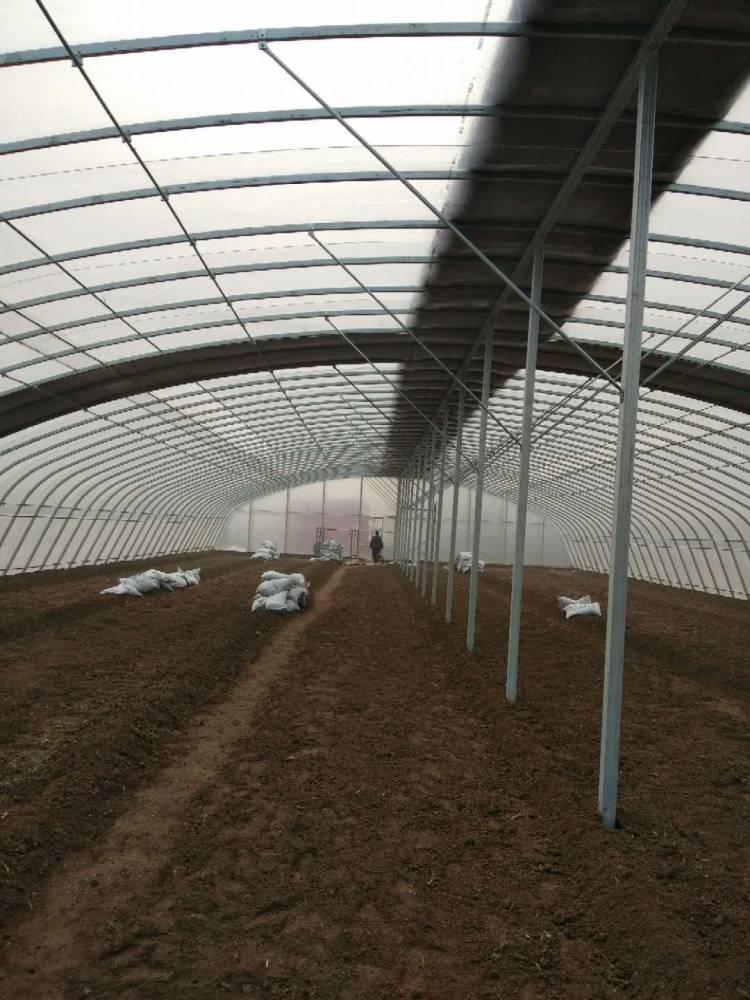 荣创农业 椭圆管大跨度单体拱棚