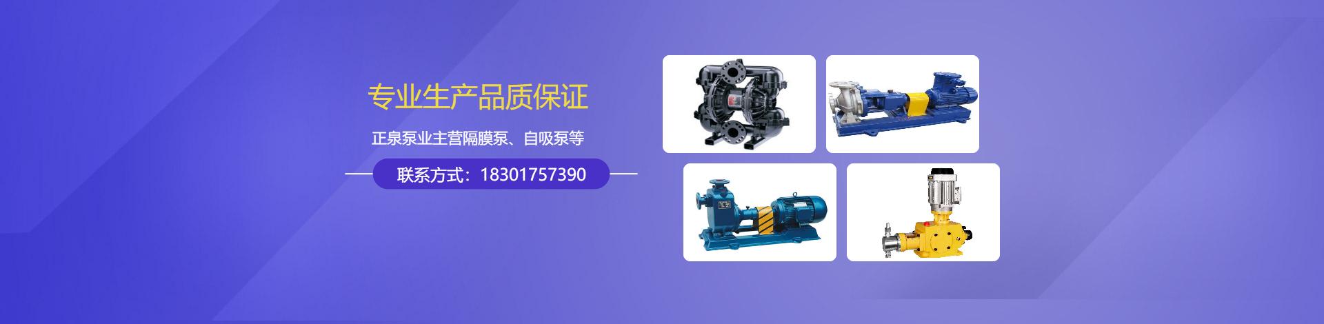 上海正泉泵业制造有限公司