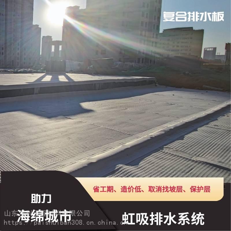 潍坊市昌邑市-虹吸式排水系统-省工期-造价低