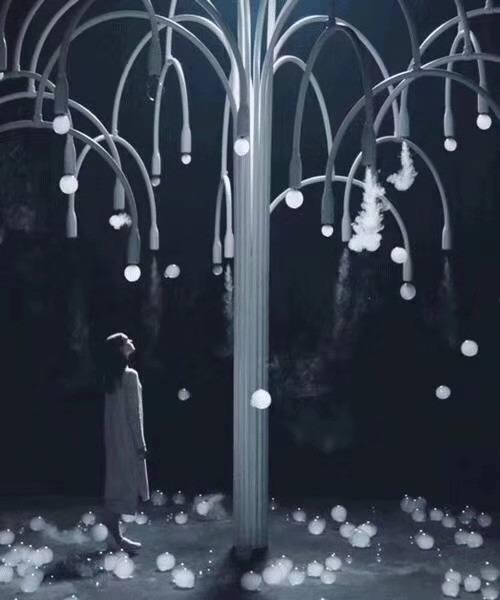 烟泡树  一颗会吐泡泡的树
