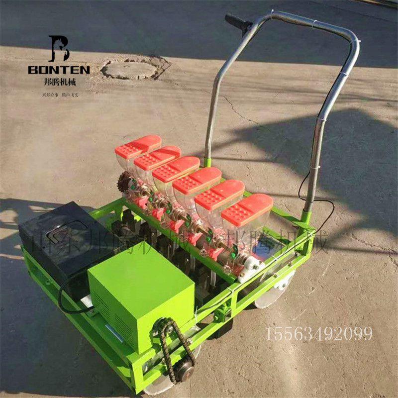 电动蔬菜播种机效果非常好,农民省力神器,厂家可以定制多种型号