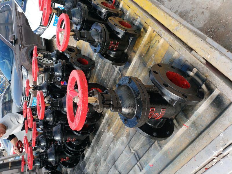 湖北省铜芯防护闸阀供应Z41W-10 DN1000法兰球铁明杆硬密封闸阀