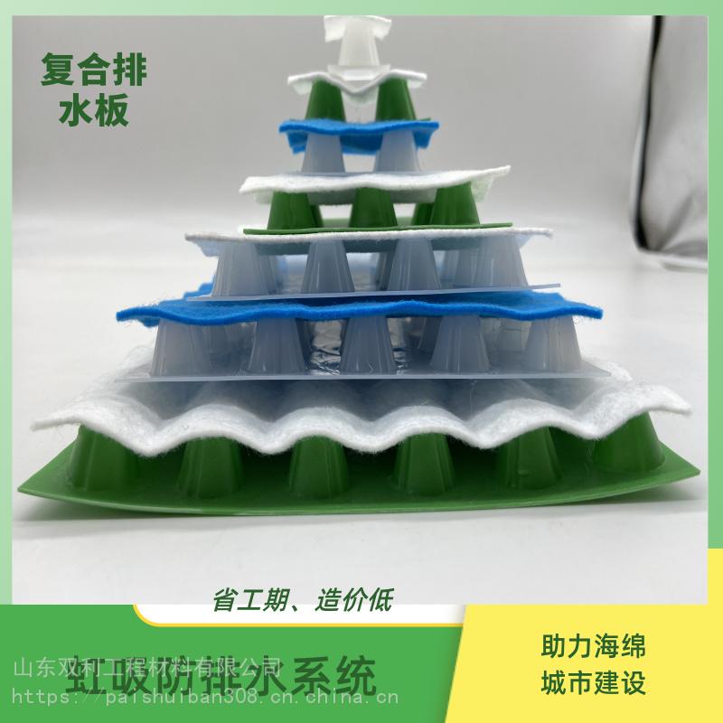 广州市白云区-虹吸式排水板-省工期-造价低