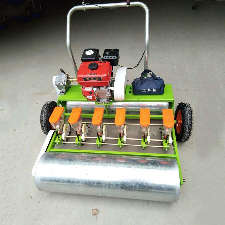 手推式汽油蔬菜播种机 多行小粒种子精播机 多功能种植机厂家