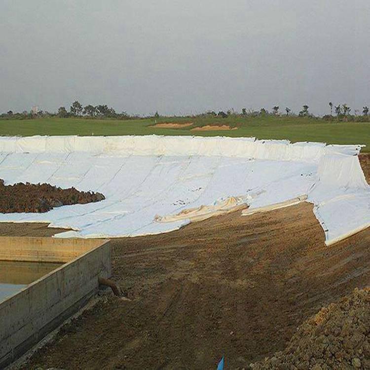 防渗复合膜多少钱 沈阳长丝复合土工膜生产厂家