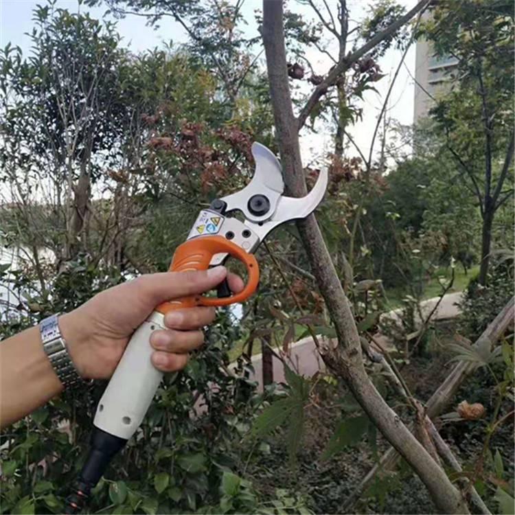 果樹枝4.5cm鋰電剪15853729420園林綠化修剪機