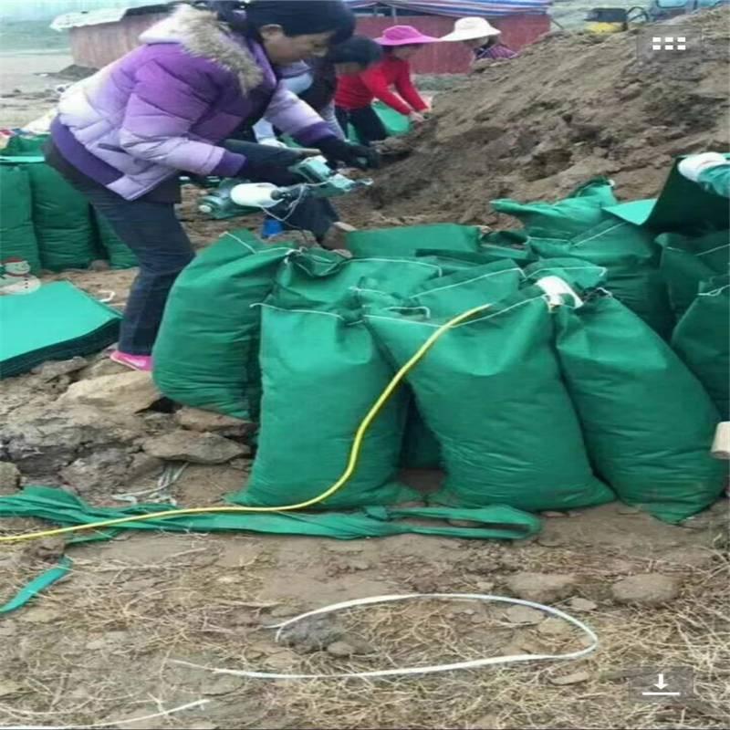 厂家定制各种规格的绿化生态袋