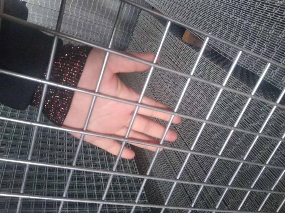 現貨鍍鋅苗床網片 密紋焊接網 建筑黑網片 地面澆筑防裂鋼網