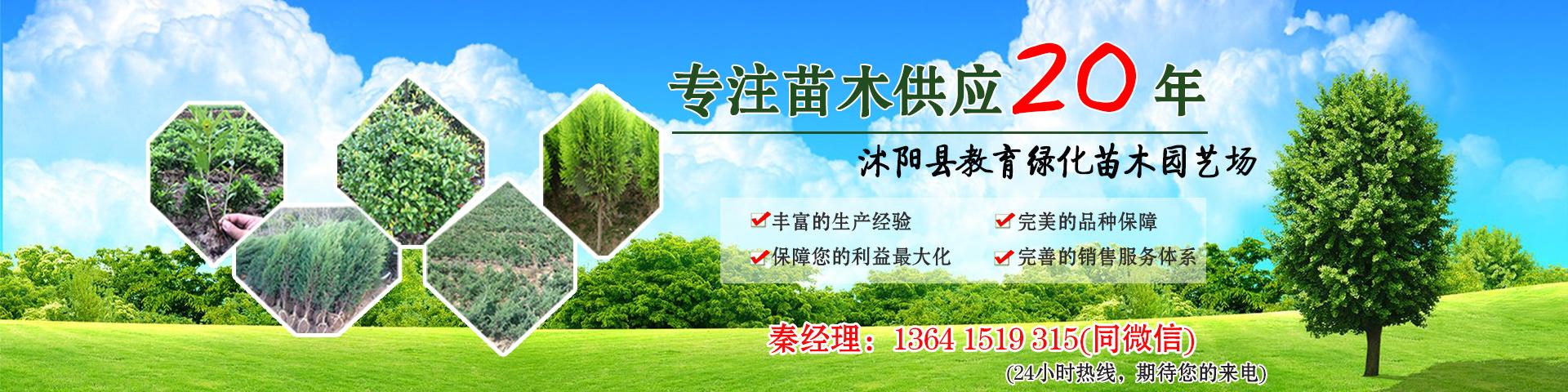沭阳县教育绿化苗木园艺场