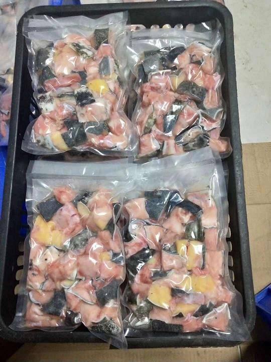 陜西漢中娃娃魚價格,漢中娃娃魚批發,漢中娃娃魚多少錢一斤
