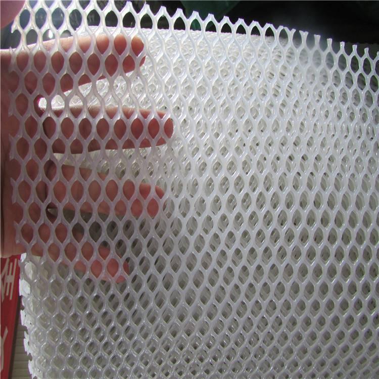 水产养殖防护网 白色塑料平网 批发PE塑料网