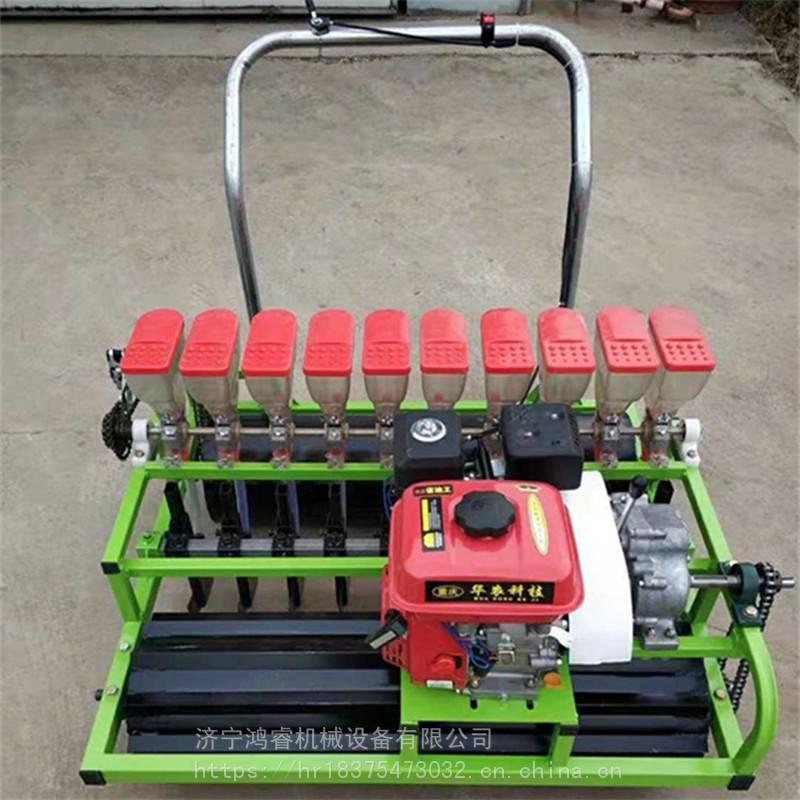 汽油机前置播种机 大棚蔬菜种子精播机 多行汽油7.5马力精播机