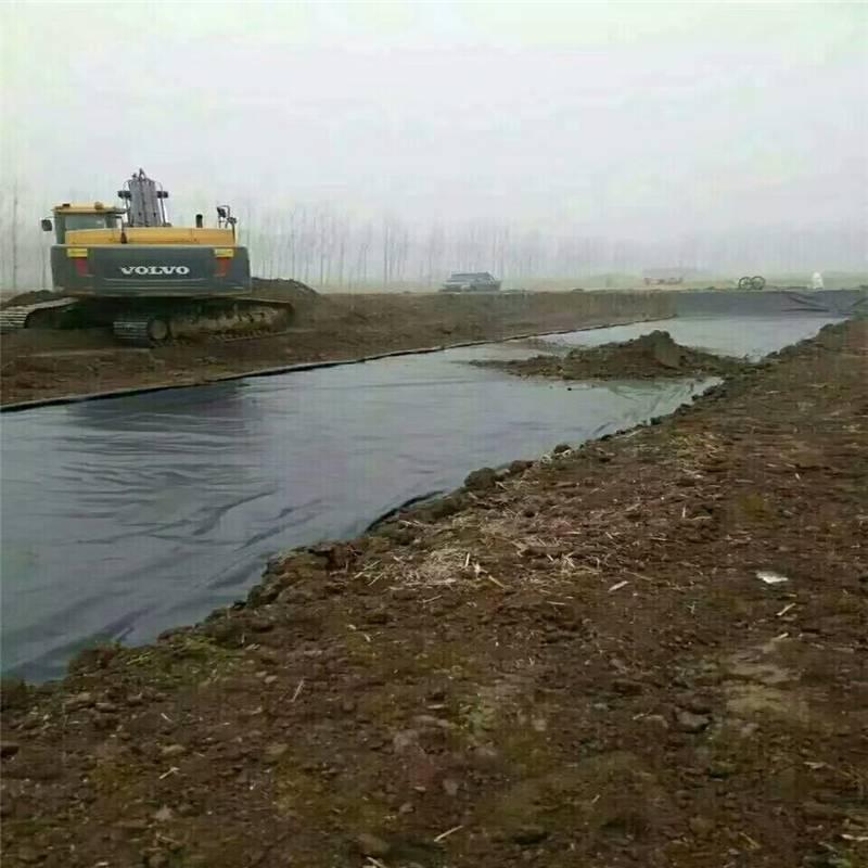 河北0.75mm水渠土工膜 国标型防渗效果好