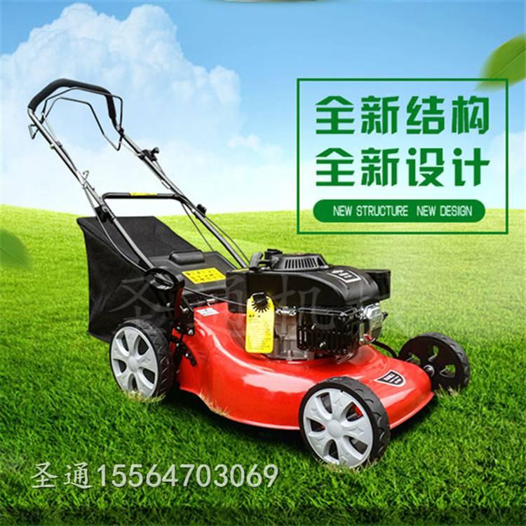 圣通汽油四冲程草坪机 植被绿化带修剪机械