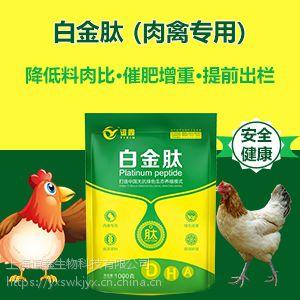 肉鸭吃什么长得快 肉禽催肥增重王 肉禽专用白金肽
