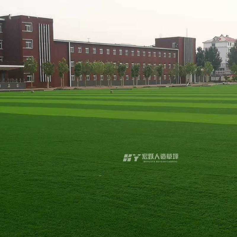 七台河仿真草坪阻燃性高5人制小型足球场人工草皮购买方式安全性