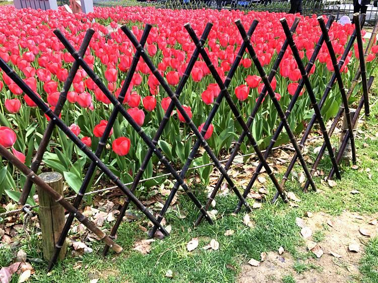 山东泰安pvc护栏竹子篱笆竹栅栏竹篱笆竹篱笆围墙护栏