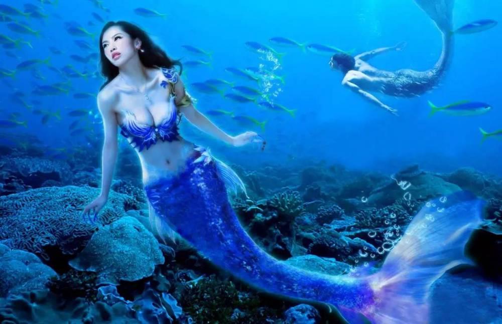 美人鱼表演视频海洋动物租赁