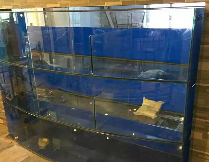 湛江定做海鲜鱼池 海鲜缸制作图解