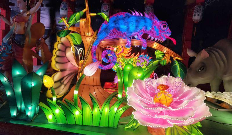 动物植物造型花灯全套展览