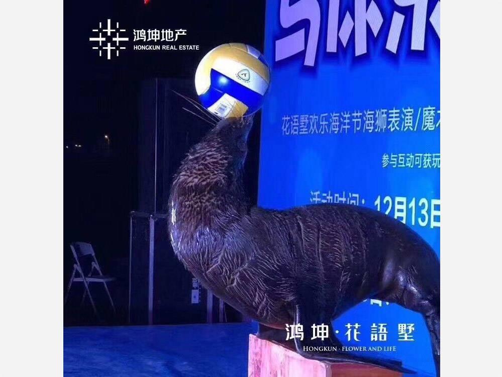 海洋动物展览海狮表演企鹅租赁