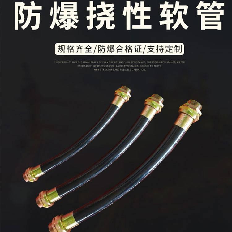防爆挠性连接管  防爆穿线管厂家 BNG防爆软管 证书齐全