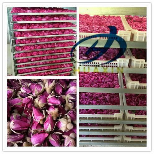 玫瑰花烘干机 低能耗空气能鲜花烘干机厂家定做