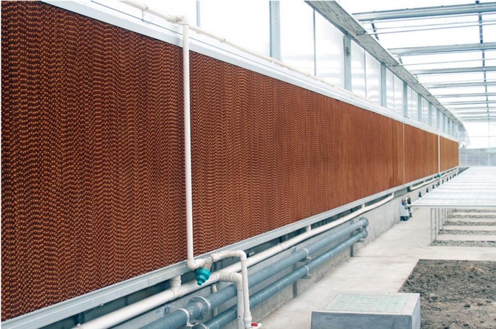 温室大棚、生态餐厅的湿帘风机降温系统