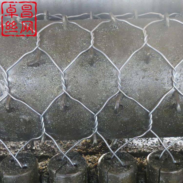 【卓昌】生产格宾石笼厂家_堤坡防护宾格笼_PVC格宾石笼挡墙施工