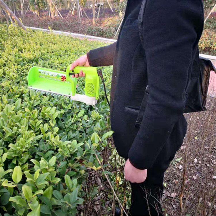 24V蓄电池采茶机15865709426电动茶叶收获机