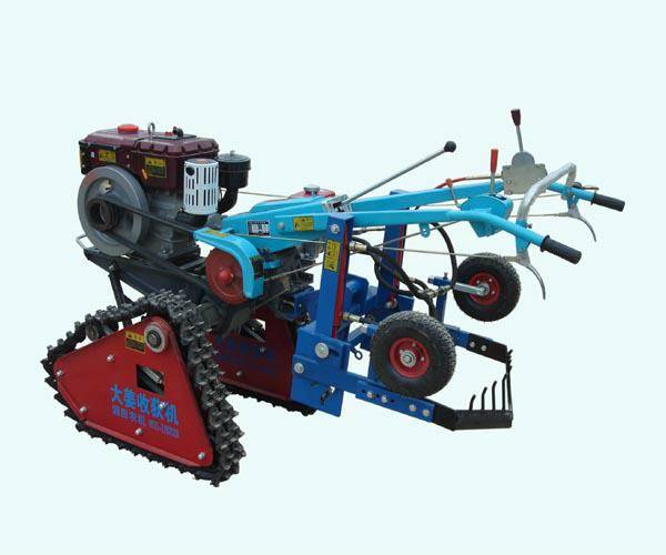 生产供应履带式大葱收获机 /出葱机价格/电启动柴油挖葱姜机