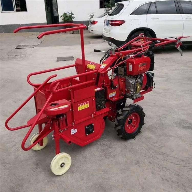 甘肃小型玉米收获机 玉米秸秆青储机 柴油动力玉米收获机