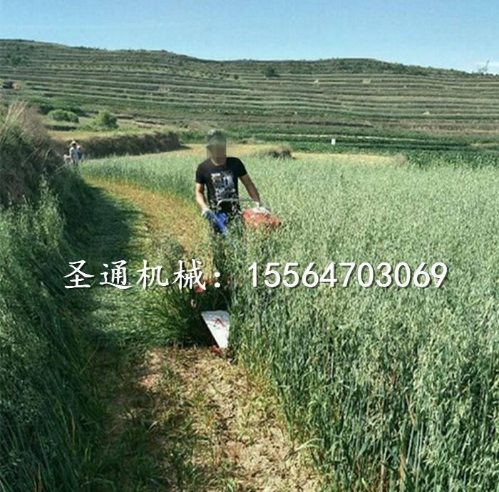 養殖戶用麥草收割機玉米桿蘆葦放片割桿機圣通