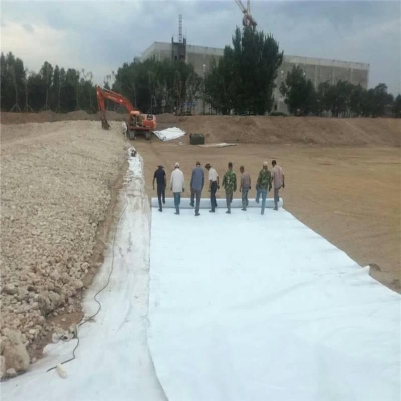 600克国标防渗土工布 河道防水铺设