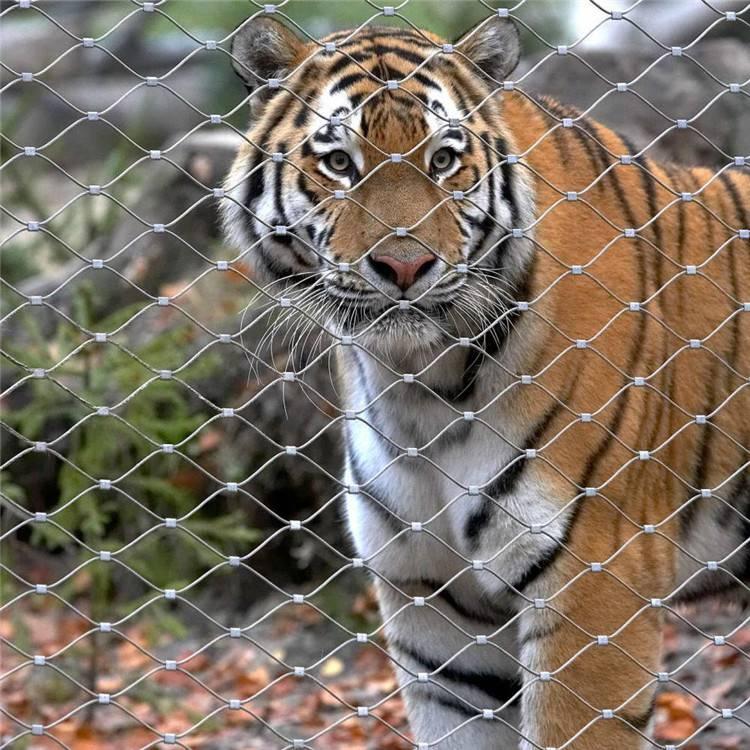 动物园用不锈钢绳网如何避免被切开