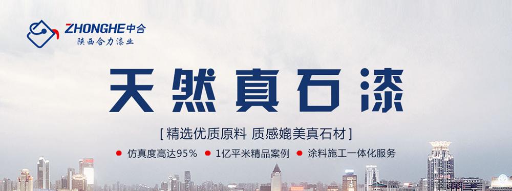 陕西合力宸宇实业有限公司