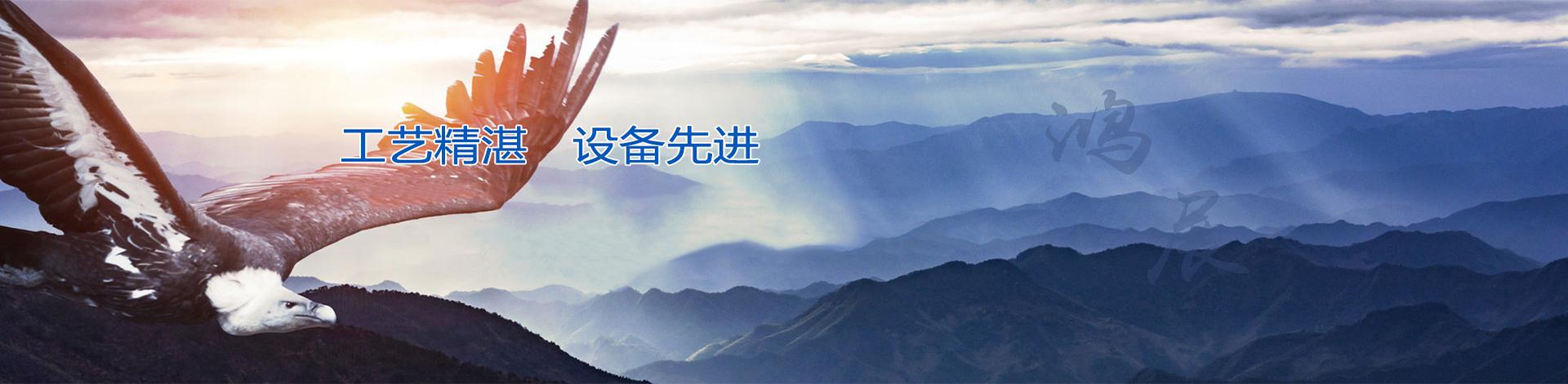 安平县鸿展金属丝网制品有限公司