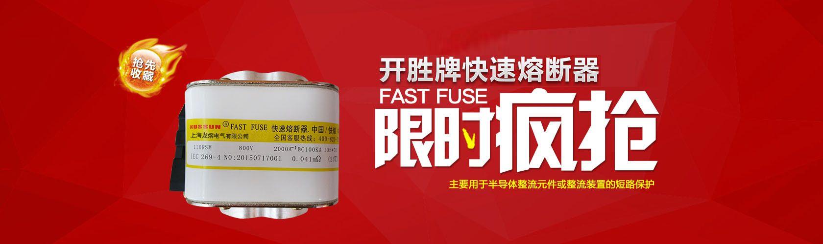 上海龙熔电气有限公司