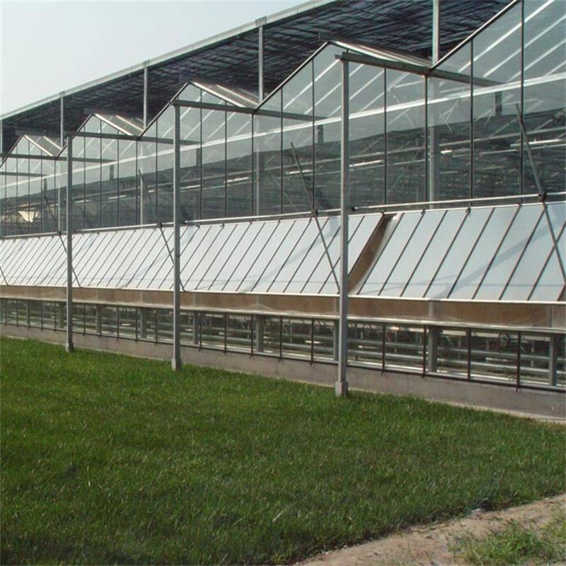 厂家供应第五代温室大棚 新型农业玻璃温室大棚 金沣 玻璃温室