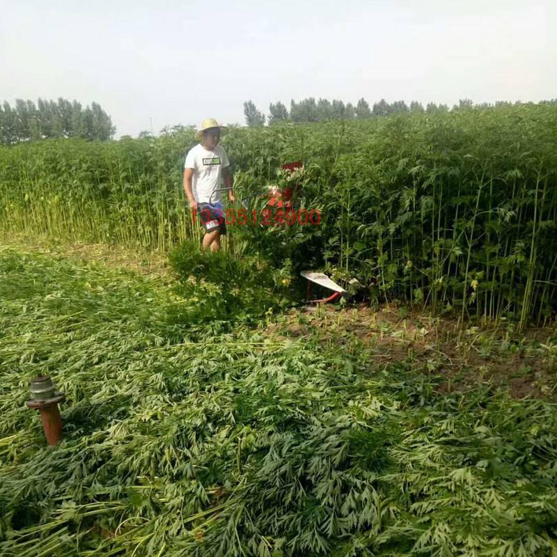 象草玉米草收割机 芝麻柳条割晒机
